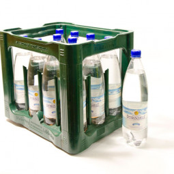 Petrusquelle Spritzig PET 12x1L