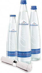 Adelholzener Gastro Classic 20x0,25L